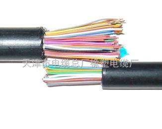 矿用阻燃铝护层通信电缆MHYAV(PUYAV),MHYAV(PUYAV)