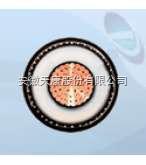 YJV-10KV,YJV22-10KV供應安徽天康生產高壓電纜-YJV YJLV YJV22 YJLV22 10KV