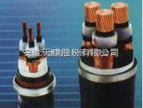 YJV,YJV22.YJV23供 17ef 应交联聚乙烯绝缘电力电缆-YJV22-10KV-天康电缆