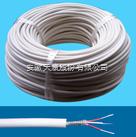 FF46P21-2 高溫電纜