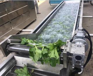 KS-600Y气泡翻浪蔬菜清洗机