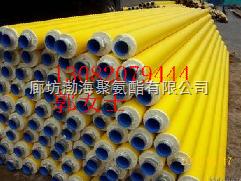 眉山冷热水保温管图片,DN 57聚氨酯保温管供应商