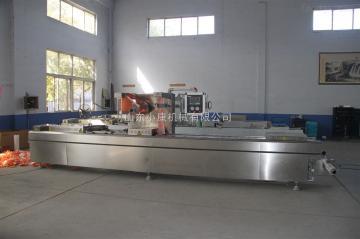 DLZ-420D型DLZ-420D型全自动连续拉伸膜真空包装机