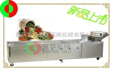 QX-32臭氧消毒洗菜机