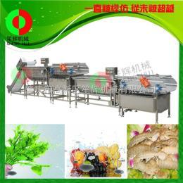WL-24臭氧消毒涡流式洗菜机