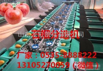 XGJ-SZZ凯祥石榴分选机-水果分级机-高品质分选机