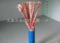 ia-DJYVP3-22本安计算机电缆《仪表电缆》长期供应