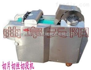 TYQ-C土豆切片切絲機(切段機)