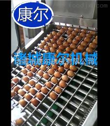 JD大?#22270;?#34507;蒸煮机自动煮蛋机厂家直销