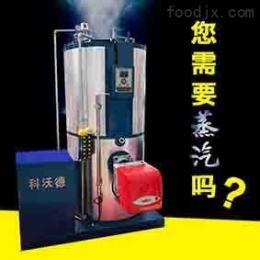 LSS蒸汽蒸发器