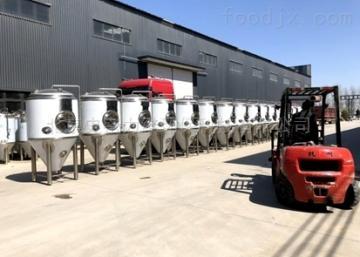 100L啤酒设备机