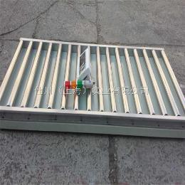 TCS-SC-G流水线滚轮电子秤