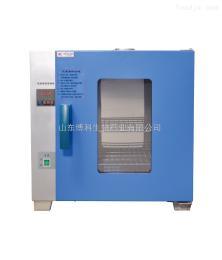 电热恒温干燥箱BOV101-42-II