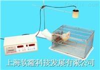 小動物活動記錄儀