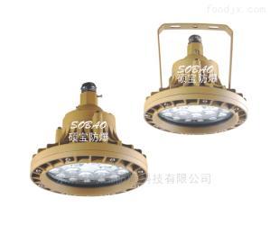 30wLED防爆节能灯 免维护防爆LED灯30w价格