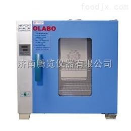 DHG-9203A型电热恒温箱  检验室专用