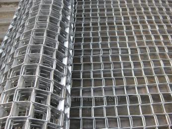 廠家供應清洗機網帶食品輸送網鏈