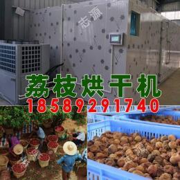 12P小型荔枝烘干机厂家 热泵荔枝干燥箱
