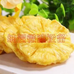 NH-036A上海納賀微波真空低溫干燥機 菠蘿水果干燥