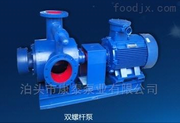 2HM油汽混输式密封性双螺杆泵 油田螺杆油泵