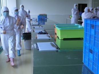 上海谭鑫包装科技水果气调锁鲜包装机 真空充气包装