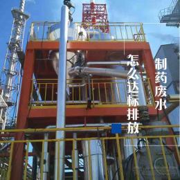 FSZ-102制药废水怎?#21019;?#26631;排放|新疆污水零排放