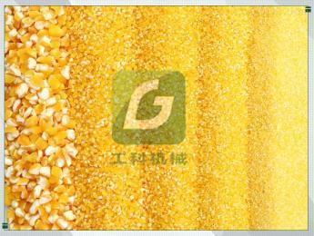 6FT-PH多功能玉米制糁机 玉米去杂机
