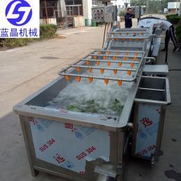 定做海带连续气泡清洗机 玉米加工设备流水线