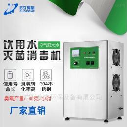 啟立30g臭氧發生器 純化水管道桶裝水消毒機