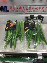 MDL590全自动蔬菜热收缩膜包装机