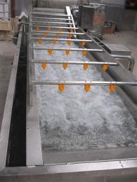 YGQX-006海产品脱盐  果蔬气泡清洗机
