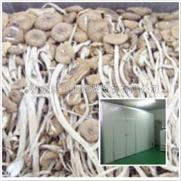 YN茶树菇烘干机 空气能食用菌烘干设备