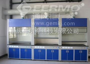 CQ-GEM-TFG重庆哥尔摩科技有限公司/重庆通风柜厂家/重庆通风橱/废气处理