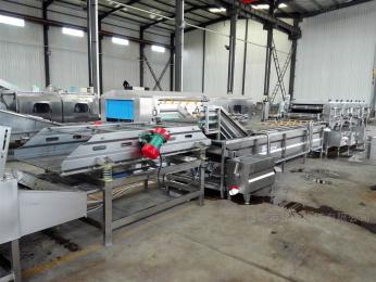 MTQX-L蔬菜深加工清洗设备 净菜加工生产线设备