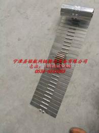 MHWL不锈钢平顶链 节距38.1