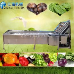 HH汇海机械HH|蔓越莓清洗设备|气泡清洗设备|蔓越莓清洗机