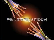 供应天康FY-KYJY-3*25+1*16防鼠防蚁电力电缆