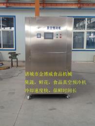 果蔬真空预冷机机器