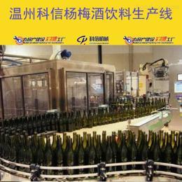 kx-2000新型玻璃瓶装杨梅酒生产流水线设备价格|全自动杨梅果酒过滤设备厂家