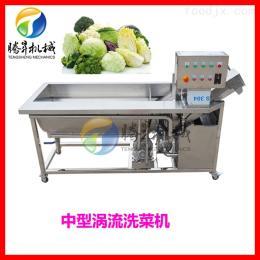 TS-X220涡流+气泡清洗机 叶菜 柑桔 瓜果臭氧清洗