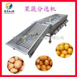 TS-F250水果大小分级机 柑桔 杨桃分选机 筛选机 尺寸可定