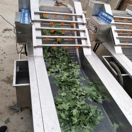 果蔬清洗机厂家   李子清洗机 包装袋洗袋机  韭菜清洗机