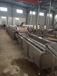 生产定制各型号毛豆气泡清洗设备加工流水线