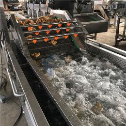 蔬菜网链式气泡清洗机 全自动蔬菜清洗设备