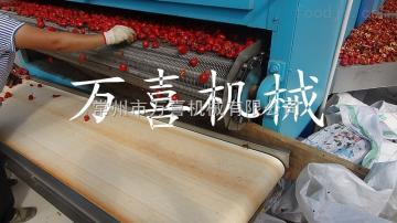 辣椒帶式烘干機