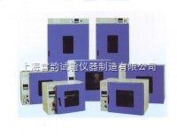 DHG-9240A电热鼓风干燥箱/烘箱/DHG-9240A鼓风干燥箱上海
