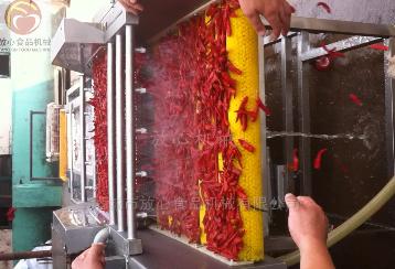 FX-1000紅辣椒清洗機