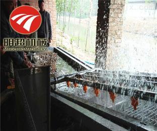 QZM-4小型金丝小枣清洗加工设备