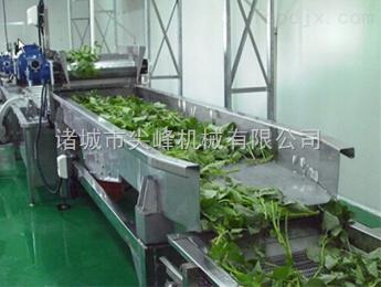 QJX-36凈菜生產流水線
