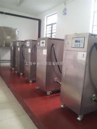 LDR0.026-0.7蒸煮米粉小型电加热蒸汽锅炉